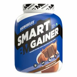 Bigmuscles Nutrition Smart Gainer