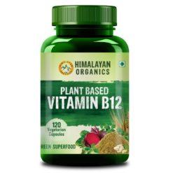 Himalayan Organics Plant Based Vitamin B12 Natural